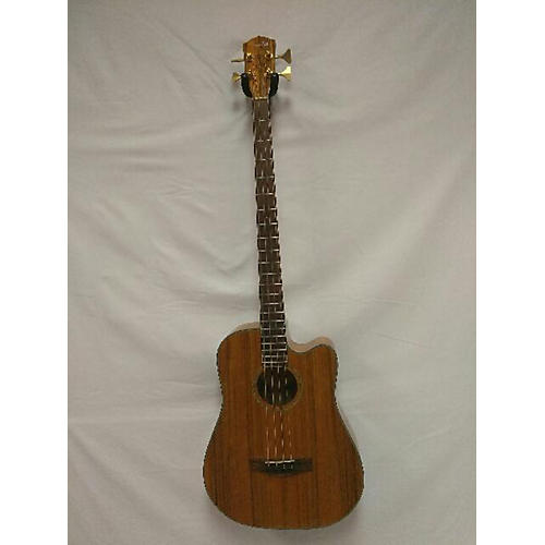 Fender Victor Bailey Acoustic Bass Acoustic Bass Guitar