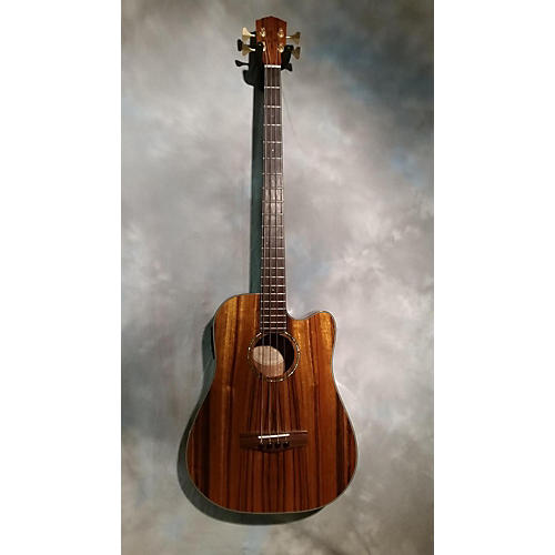 Fender Victor Bailey Acoustic Bass Guitar
