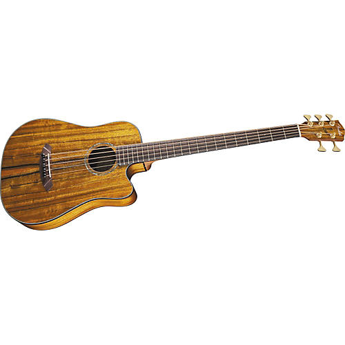 Fender Victor Bailey Signature 5-String Acoustic-Electric Bass Guitar