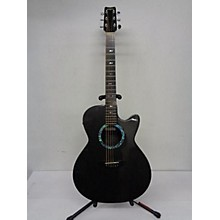 Rainsong WS1000 Acoustic Electric Guitar
