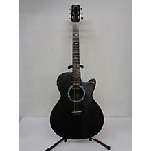 RainSong WS1000 Acoustic Electric Guitar