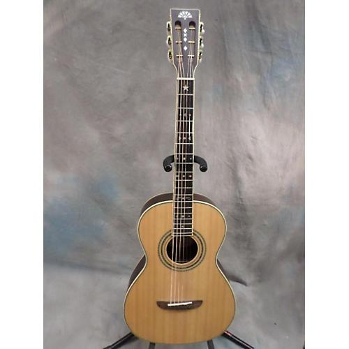 Washburn Wp27sns Acoustic Guitar