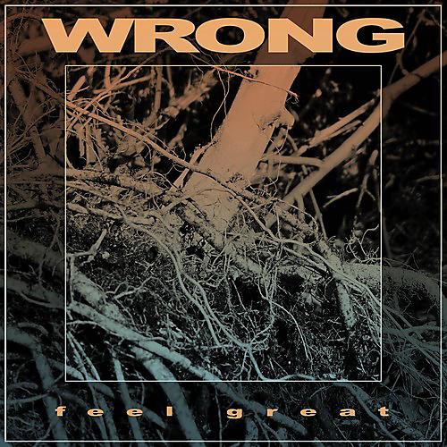 Alliance Wrong - Feel Great